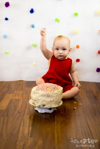 Camille Smashing Cake Birthday by 1Chapter Photography-27
