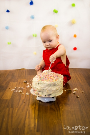 Camille Smashing Cake Birthday by 1Chapter Photography-29