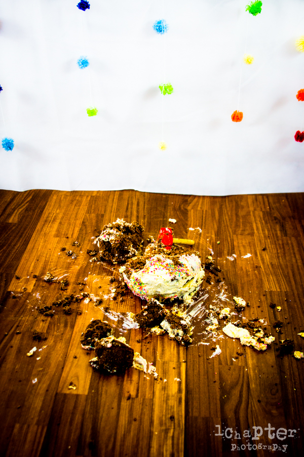 Camille Smashing Cake Birthday by 1Chapter Photography-36