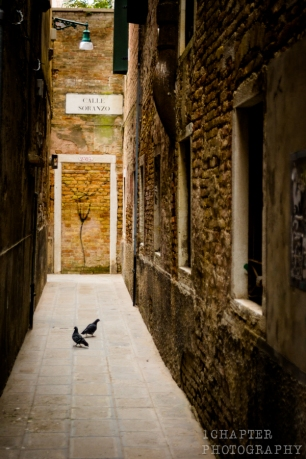Venezia by 1Chapter Photography-31