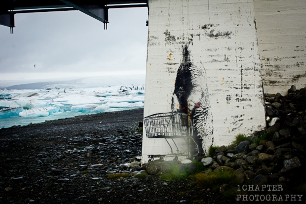 Iceland by 1Chapter Photography 64
